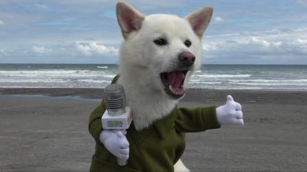 小福采访大海