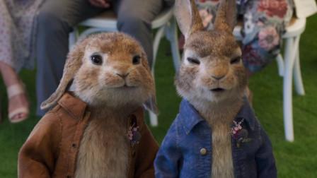 经典系列《比得兔2》首发预告