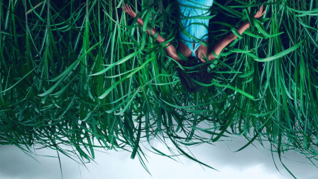 刺激!神秘草丛,死亡循环,斯蒂芬.金的新作比《恐怖游轮》还精彩?