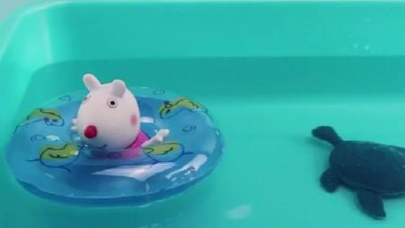 小猪佩奇和小羊苏西一起来游泳喽,一起带上游泳圈下游泳池喽