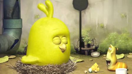 爆笑虫子:小黄和小鸡成了好朋友,把抢来的美食全都给了小鸡,自己只喝水