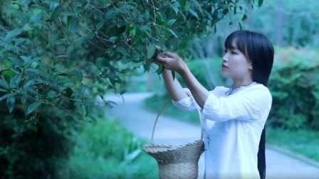 对话李子柒,揭秘中国最火美食网红
