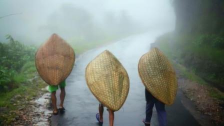 """全球最""""潮湿""""的地方,全年335天都在下雨,被子都长出了蘑菇!"""