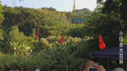 西双版纳 勐泐大佛寺文化旅游区 放飞孔雀