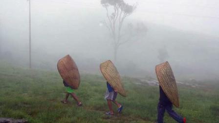 """世界最""""潮湿""""的地方,一年有335天在下雨,被子都能长出蘑菇!"""