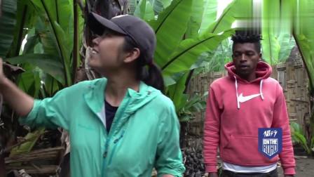 侣行带你看非洲神奇植物:看着像香蕉树,却可以拿来做面包