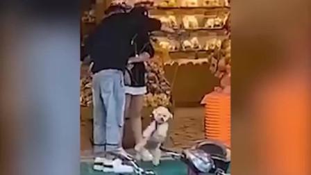浙江一男子当街虐狗,吊起来抡圈,网友:不怕爱狗人士!