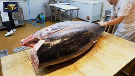 蓝鳍金枪鱼秀切割秀,切到入口那一块,想想都不便宜啊