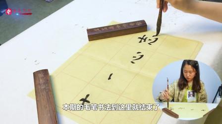 """学习永无止境,钢笔字书法入门教程,今天来写""""志"""""""