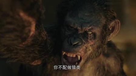 猩球崛起:科巴祈求原谅,不料猿王心意已决,将它扔下高塔