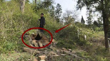 农民挖塌狐狸洞,意外发现顶级国宝,专家:上交国家有奖励!