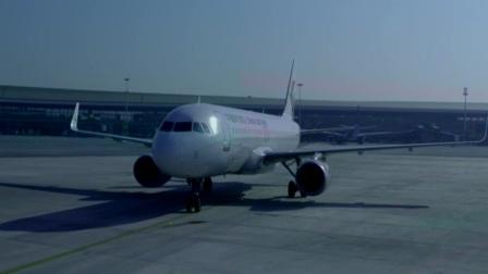 红绿灯 平安行 2019 大兴机场首个国际航班起飞 春秋航季预计开通航线119条