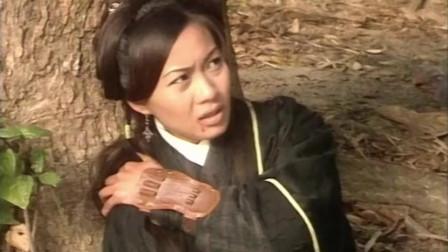云中鹤对木婉清起了歪心思,刚要下手,不料岳老三看不下去了!