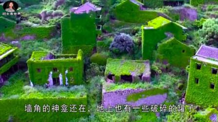 广东一处无人村,全村人移居海外,全被绿植覆盖!
