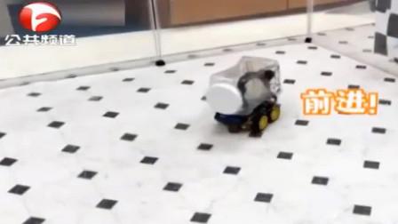 科学家成功训练老鼠驾驶迷你车, 它还乐在其中