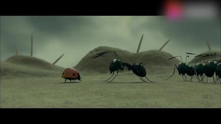 《昆虫总动员》:红蚂蚁发动战争,黑蚂蚁居然用火柴应战,引燃了烟花击退敌人