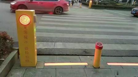 你还在闯红灯吗?马路小可爱遇到错误喷雾提示