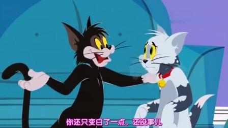 猫和老鼠:女主人要奖励汤姆,给汤姆带好吃的,汤姆十分期待