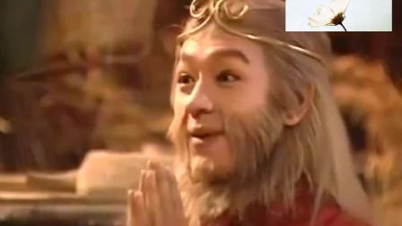 天地争霸美猴王 观音姐姐下凡,一上来就教训了三个大仙!