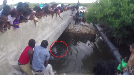 桥下水花四溅,走近看清后,路人纷纷不淡定了