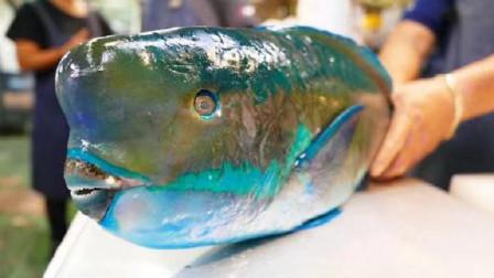 日本顶级大厨现场展示刀工,这生鱼片切得,看着就好吃