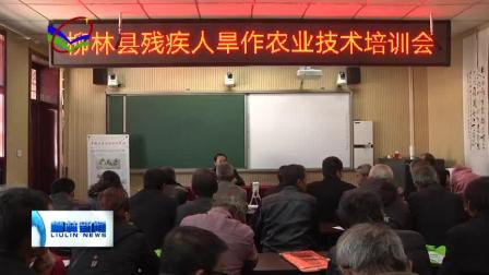 柳林县残联依托刘笑农业服务部进行农村残疾人旱作实用技术培训会