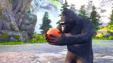 趣味益智动画片 猴子打篮球灌篮