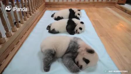 午睡時間到集體賴床的正確姿勢