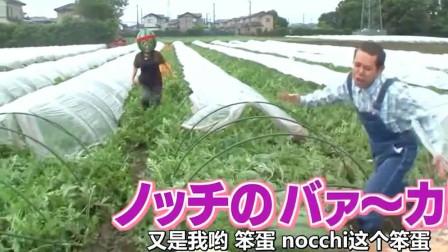 日本变态整人综艺,你看看她笑的多开心啊?这也太过分了!哈哈哈
