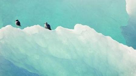 被点亮的星球 冰川溪流汇聚成生机盎然的蓝色星球,生命之源被播撒在最合适的祥瑞之地