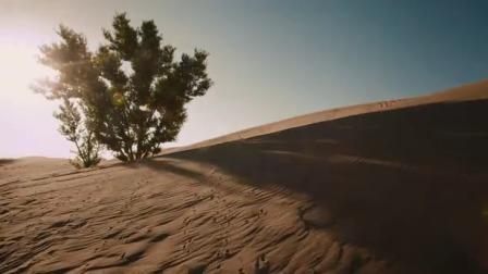 河西走廊之嘉峪关 兴旺的城:严寒环境风沙壁滩,贯连历史复兴缩影