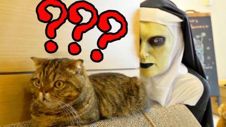 万圣节主人扮鬼修女,吓自家猫咪!MMP