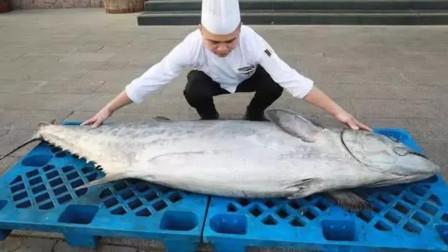 渔民捕获196斤大鲅鱼 饭店花2万买下:做成标本