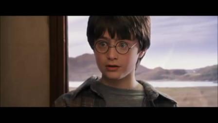 """一位学汉语的高中生给《哈利波特》配的中文配音……听完感觉这""""哈利破特""""还挺呆萌可爱的?"""