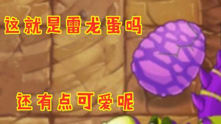 植物大战僵尸:雷龙蛋的威力也就那样嘛,轻松拿下胜利!