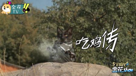 爆笑四川方言配音:如果猫咪也会玩吃鸡游戏,配上四川话笑的肚儿痛