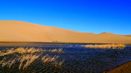 我今天就是要在沙漠中挖水库,中国这项工程,让其他国家坐不住了
