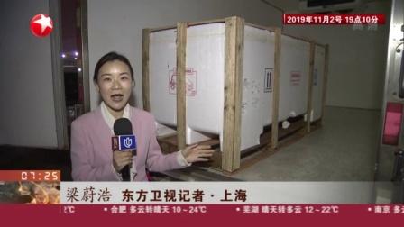 视频|第二届进博会: 600斤地中海蓝鳍金枪鱼运抵上海