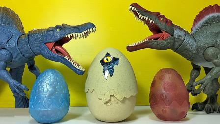 恐龙蛋玩具拆箱发现小恐龙玩具