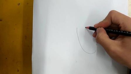 简笔画:茄子的画法教程