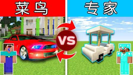我的世界 菜鸟vs专家,看看到底谁买的二手车更好?