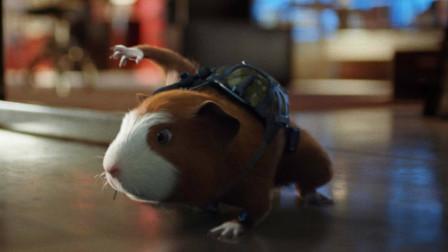 小老鼠为了给父母报仇,成为了一名超级特工,一部喜剧动物电影