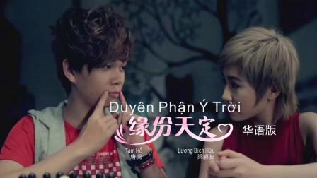 越南华语歌曲《缘份天定》Duyên Phận Ý Trời