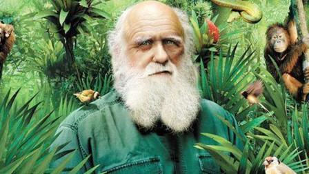 人类起源到底是什么?是达尔文进化论还是神创论?答案来了!