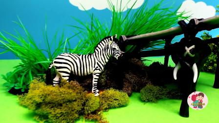 野生动物玩具,儿童小农场建造自然保护区,给斑马水牛搭建大鹏,猴子大象,儿童玩具亲子互动,小臭臭亲子游戏