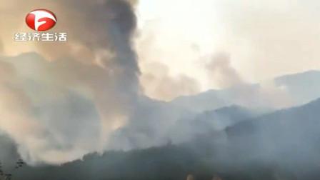 岳西突发山火,满山都是浓烟滚滚