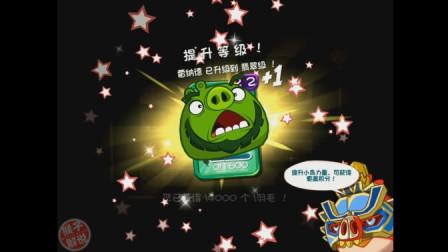 猴子解说《愤怒的小鸟2(国际版)》苹果版381关