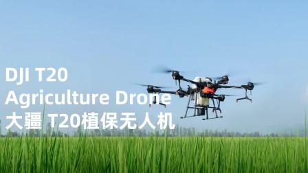 DJI 大疆创新发布最新 T20 植保无人飞机-智勇双全