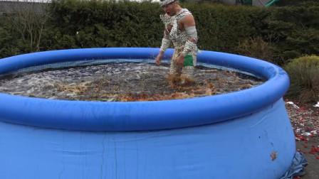 一老外在身上粘满曼妥思,直接跳进可乐泳池,最后会发生什么?