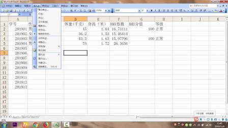 湖南省信息技术八年级上册第一单元活动二 利用函数功能计算BMI指数的平均值